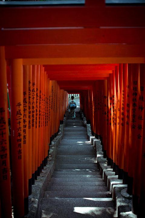 SOJO in Edo-Tokyo[All photographs by Masaaki Maeda]